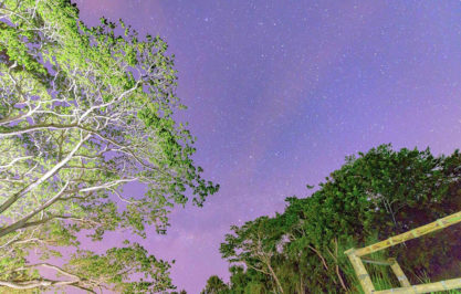 Luna Nueva – Kenneth Sewards