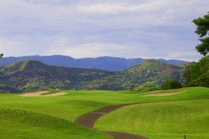 Banner Home Golf